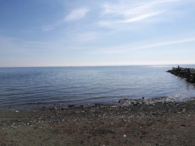 Çanakkale Ayvacık Sazlı/Satılık Denize Sıfır 16 Dönüm Zeytinlik