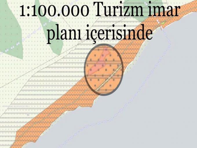 Çanakkale Ayvacık Sazlı/Denize Yakın Zeytinlik