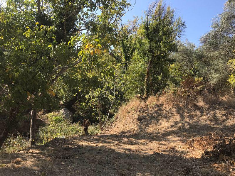 Çanakkale Ayvacık Yeşilyurt/Satılık 352 m² Bahçe