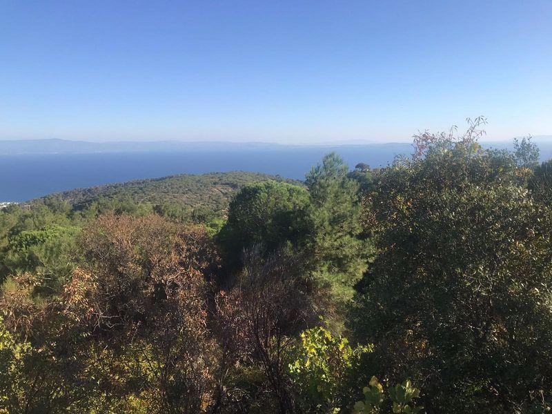Çanakkale Ayvacık Nusratlı/Satılık Deniz Manzaralı Bağ